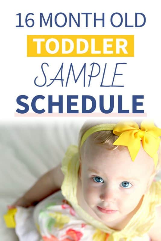 Pinterest image about a 16 Month Old Sample Schedule