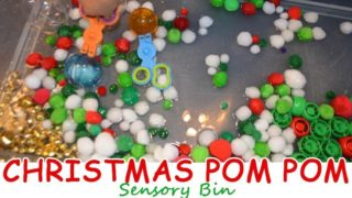 Christmas Pom Pom Sensory Bin