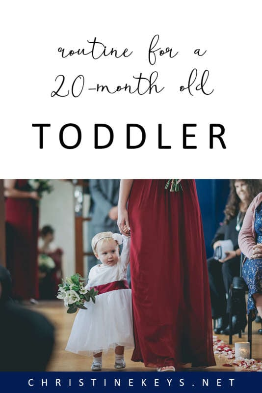 Routine For A 20-Month Old Toddler || This is Annie's summary for June 2018. All her milestones and the routine she had at 20-months old. #toddler #routine #toddlerroutine #parenting #motherhood #toddlergirl #toddlerroutine #sleep #napschedule