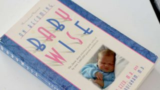 What You Need To Know About Babywise