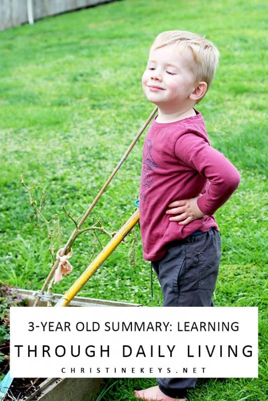 3-Year Old Summary: Learning Through Daily Living || Find out how we've been dealing with changes in sleep habits as well as behaviour. #parenting #toddler #naptime #naps #toddlersleep #motherhood