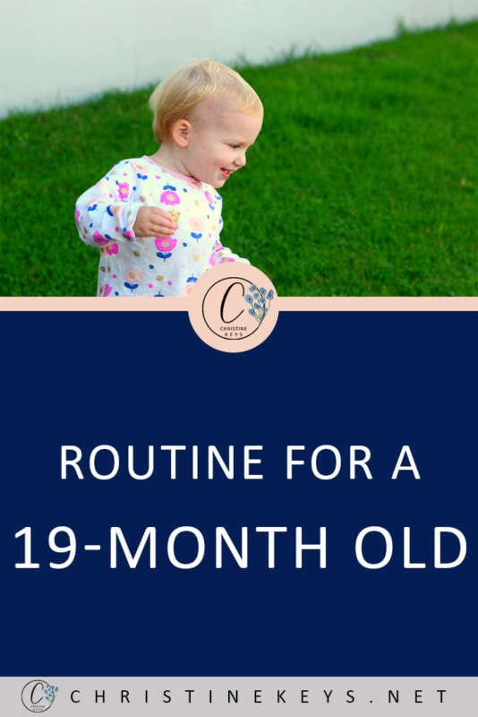 Routine for a 19-Month Old! || This is Annie's May 2018 summary. How her routine looks and any changes that have taken place. #baby #toddler #19months #parenting #motherhood #sleepschedule #babysleep