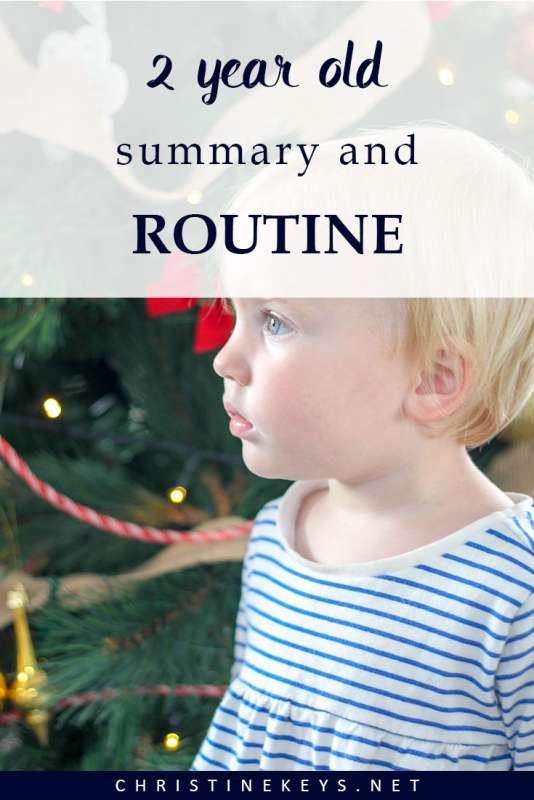 2-Year Old Summary and Routine|| Take a look at what a 2-year old's routine can be like. How much sleep is appropriate and some of their favourite toys. #toddler #routine #toddlerroutine #parenting