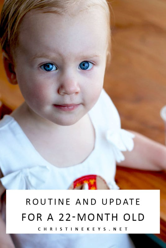 Routine and Update For a 22-Month Old || Find out how things are going in this update. How is potty training going? #parenting #toddlers #toddler #toddlerroutine #motherhood #routines