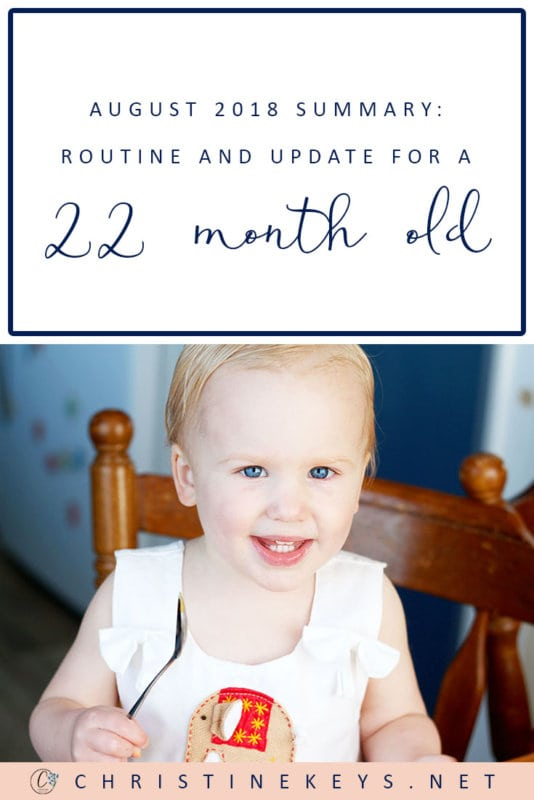 August 2018 Summary: Routine and Update For a 22-Month Old || Find out how things are going in this update. How is potty training going? #parenting #toddlers #toddler #toddlerroutine #motherhood #routines