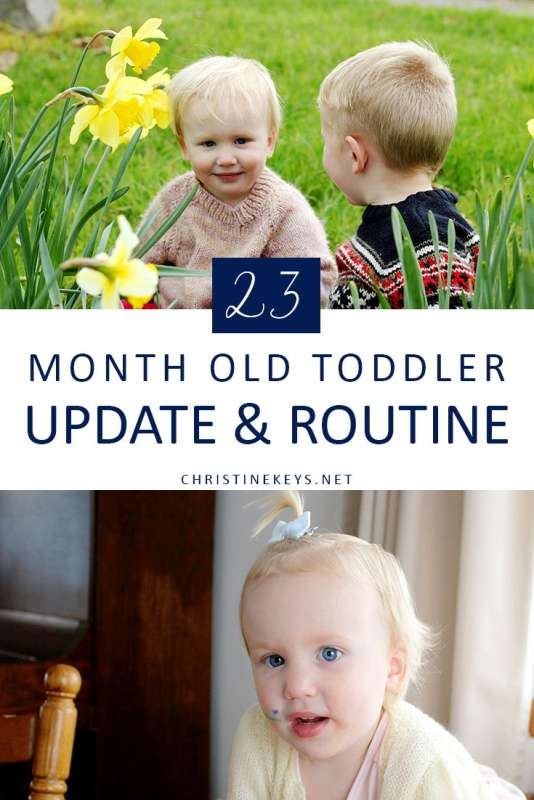 23 Month Old Toddler Update & Routine || Find out Annie's routine and summary for the month of September. #toddlers #parenting #routine #sleep #babywise #toddlerwise