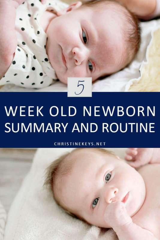 5-Week Old Newborn Summary and Routine || Read all about how Charlotte did in her 5th week and how the new routine worked. #parenting #motherhood #baby #routine #newborn #schedule #sleep #babysleep #momsoncall #babywise