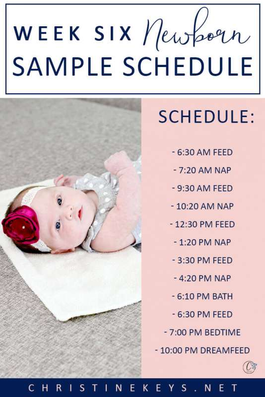 Week 6 Newborn Sample Schedule || Read about the routine we're following that got our baby girl to sleep through the night. #parenting #baby #newborn #babysleep #momsoncall #sleeptraining #schedule #sleepschedule