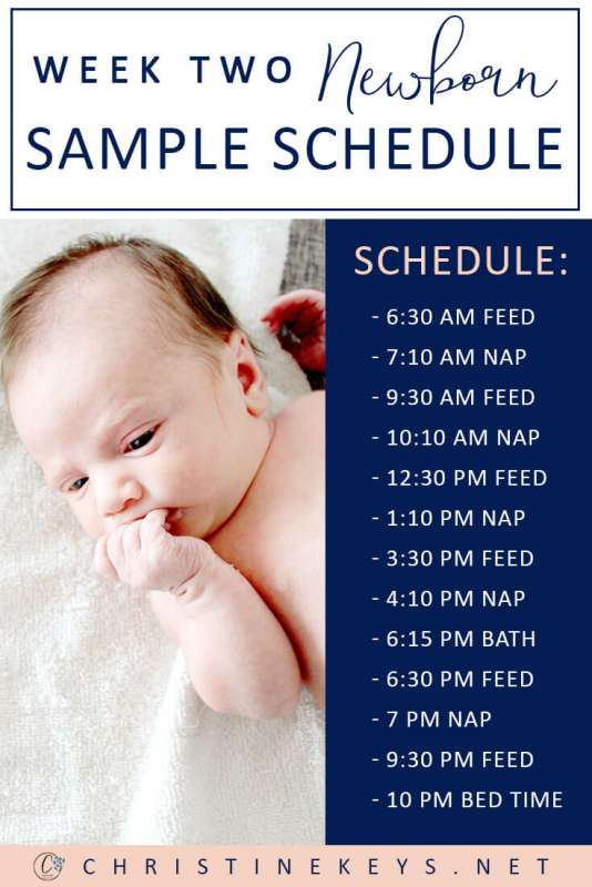 Two Weeks: Newborn Sample Schedule || Use this great routine to help your baby feed better and sleep well. #parenting #newborn #baby #babies #sampleschedule #babyschedule #routine #sleep